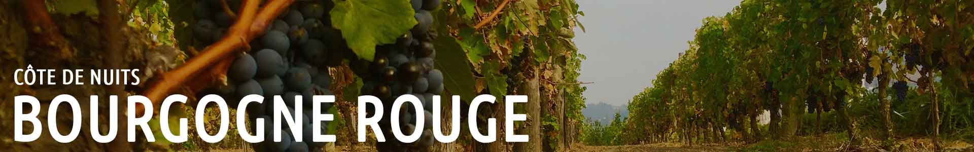 Pleasure Wine: Bourgogne Rouge Wines